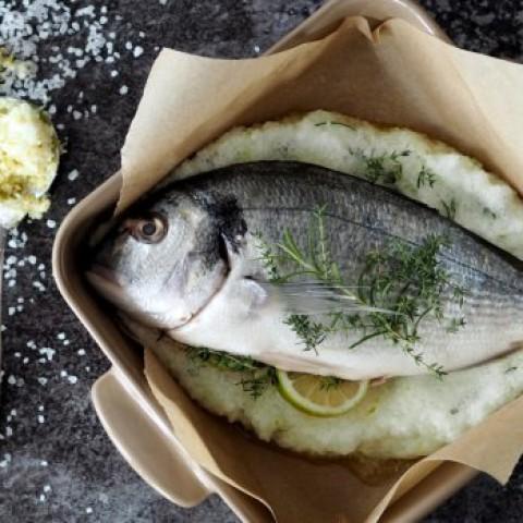 Pre milovníkov rýb